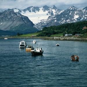 Expériences arctiques Laponie et archipel des îles du Svalbard 16