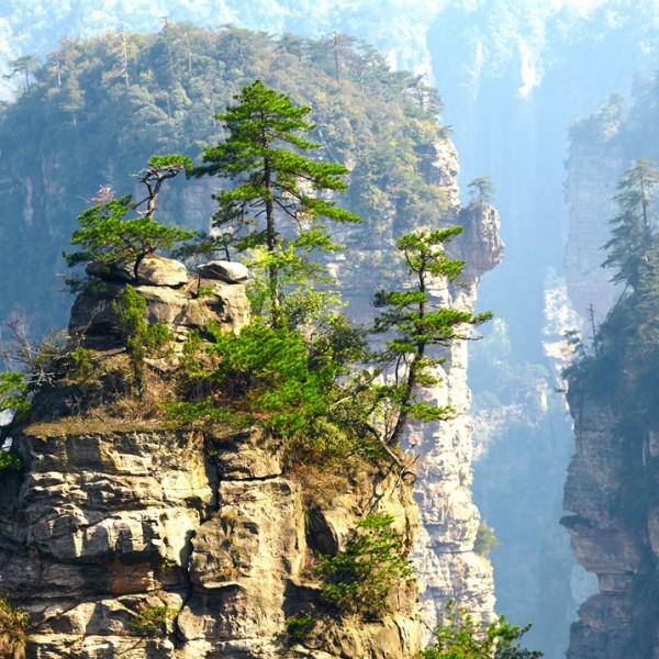 CHINE – Zhangjiajie national park – Copyright  silver-john