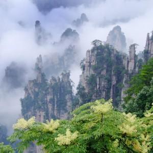 Tianzi Mountain in the Cloud