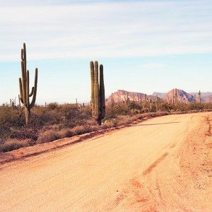 USA Arizona ( Copyright  Paul B. Moore )