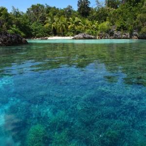 croisière îles de la sonde et Papouasie INDONESIE (19)
