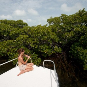 BAHAMAS Bimini-17 – Bimini copyright The Islands Of The Bahamas