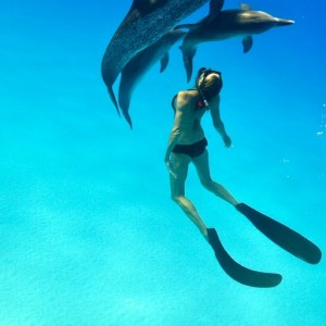 Bahamas-Tourism (16)d – copyright Atmoji – Wildquest
