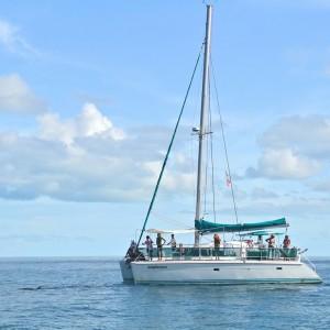 Bahamas-Tourism (20)d – copyright Atmoji – Wildquest