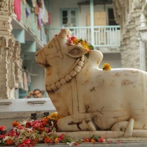 MUMBAI Sculpture of Nandi © Malgorzata Kistryn