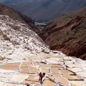 Cusco-maras